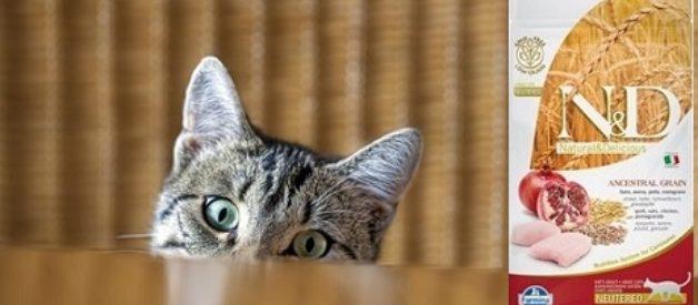 N&D Kısırlaştırılmış Kedi Maması Yorum
