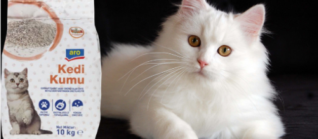 Aro Kedi Kumu Yorum – Metro Market Kedi Kumu